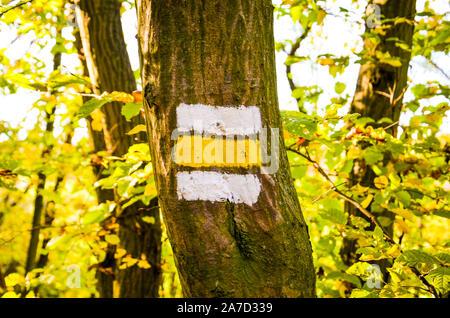 Plaquette avec rayures jaune et blanc peint sur un tronc d'arbre dans la forêt. Signe de l'information donnant une orientation pour les randonneurs sur un sentier de randonnée. Waymarking, pionnière pour les touristes. Banque D'Images