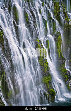 Burney Falls cascades 129 pieds au-dessus de basalte couverte de mousse à northern California's McArthur-Burney Falls Memorial State Park dans le mont Cascade Ran