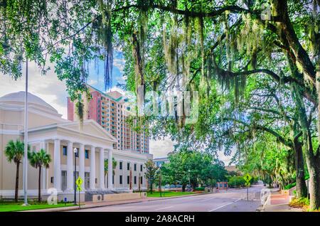 La Cour suprême de Floride est photographié, le 20 juillet 2013, à Tallahassee, Floride. Banque D'Images