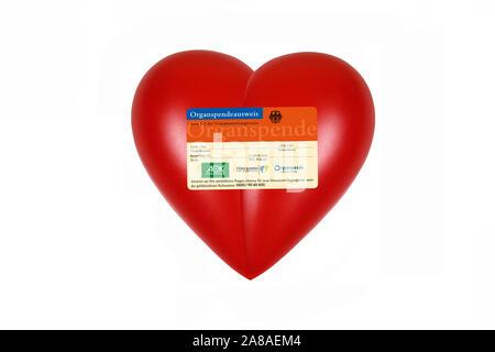 Rotes Herz, orgue, Gesundheit, Körperteil Organspendeausweis,, Banque D'Images
