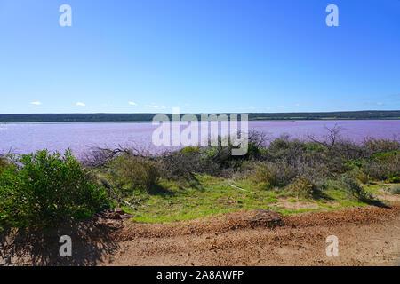 La vue quotidienne du Lac Rose, près de Port Gregory sur la Côte de Corail dans l'ouest de l'Australie Banque D'Images