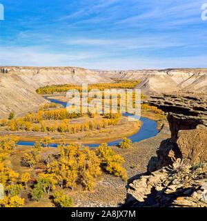 Couleurs d'automne le long de la rivière Marias près de loma, Montana Banque D'Images