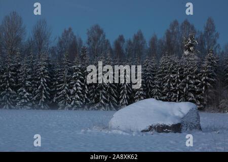 Paysage avec des champs couverts de neige, un gros rocher et sapins. Banque D'Images