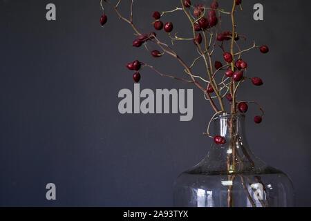 Flacon en verre avec de grandes branches d'églantier rouge sec sur la table de bois, selective focus Banque D'Images