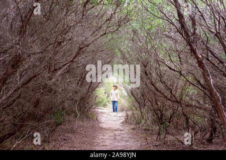 Un homme marche à travers une voûte d'arbres morts le long d'un chemin de terre dans une forêt touffue Banque D'Images