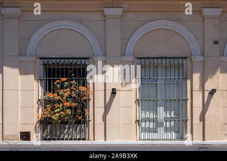 Fenêtres jumelles avec fleurs orange. Le temps de Siesta est sacré dans toute l'amérique latine et en Espagne, surtout durant les après-midi d'été. Banque D'Images
