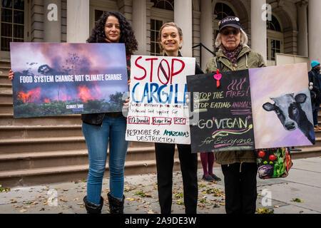 New York, USA. 14Th Nov, 2019. Les militants de l'environnement à l'extérieur de l'Hôtel de Ville après l'annonce d'une résolution appelant à l'interdiction avec des entreprises liées à l'Amazonie Les incendies dans la ville de New York le 14 novembre 2019. Une augmentation annuelle de 5 % de la demande de viande de boeuf a incité les éleveurs d'Amérique du Sud pour brûler les étendues de forêt tropicale historique, un atout dans la lutte contre le changement climatique, qui sont allés hors de contrôle. (Photo de la société Holtermann-Gorden/Pacific Press) Credit: Pacific Press Agency/Alamy Live News Banque D'Images