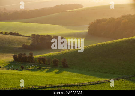 Lever du soleil d'automne sur le South Downs près de Brighton, East Sussex, Angleterre. Banque D'Images