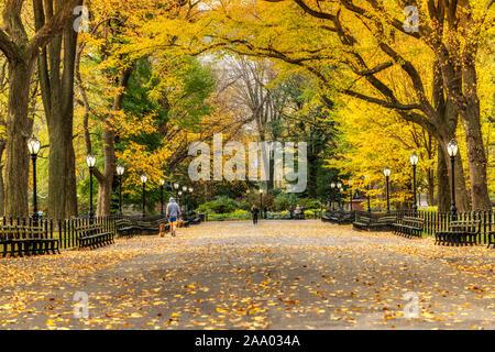 Compte tenu de l'automne littéraire et centre commercial à pied, Central Park, Manhattan, New York, USA Banque D'Images