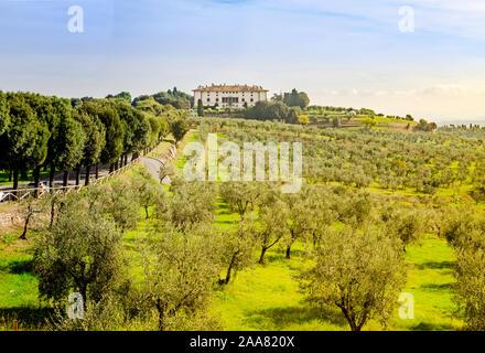 Artimino, Toscane, Italie, un paysage extraordinaire de voir l'hôtel Villa Medici La Ferdinanda ou Cento Camini façade parmi les oliviers verts