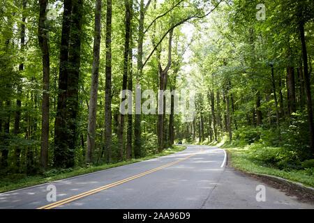 En voiture la distance sur la route US 441, promenade à travers le parc national Great Smoky Mountains, etats unis Banque D'Images