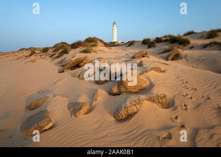 Cap de Trafalgar phare parmi les dunes de sable, Los Caños de Meca, Costa de la Luz, province de Cadiz, Andalousie, Espagne, Europe