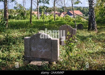 Vieux cimetière près de Ornowo dans le comté d'Ostroda village de Pologne Banque D'Images