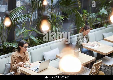 High angle portrait de deux jeunes femmes travaillant à des tables séparées en café à une terrasse ornée de plantes, copy space Banque D'Images