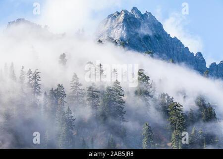 La dérive des nuages bas à travers la forêt et les montagnes (Président) Pointe près de Snow Lake à Snoqualmie Pass en cascades de l'état de Washington, USA. Banque D'Images