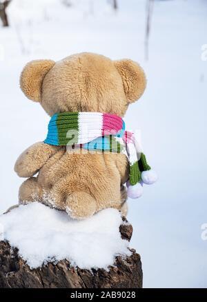 Ours en peluche dans un foulard est assis en arrière sur une souche au milieu de la neige blanche sur une journée d'hiver. Banque D'Images