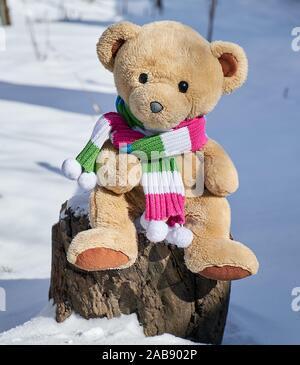 Ours en peluche dans un foulard est assis sur une souche au milieu de la neige blanche sur une journée d'hiver. Banque D'Images