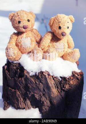 Deux petits nounours sont assis sur une souche dans un jour d'hiver enneigé. Banque D'Images