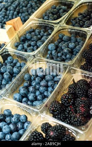 Les bleuets sur étagère dans le marché. Les fruits triés dans des boîtes en plastique transparent. Banque D'Images