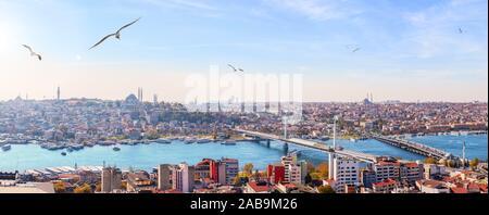 Metro bridge, le pont Atatürk et les toits de district de Fatih, Istanbul panorama.