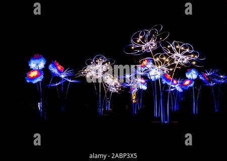 Londres, Angleterre, Royaume-Uni - 04 janvier 2019: les lumières de Noël affichage la nuit à Kew Royal Botanic Gardens, London, UK Banque D'Images