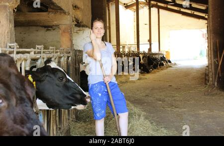 La productrice et nourrir les vaches dans un environnement stable et fier de sa profession Banque D'Images