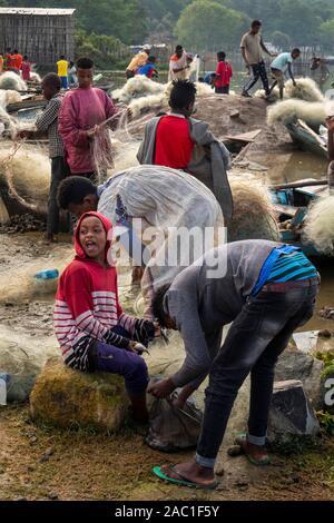 L'Éthiopie et de la vallée du Rift, marché aux poissons, Ville Hawassa, les pêcheurs et les enfants la préparation de filets Banque D'Images