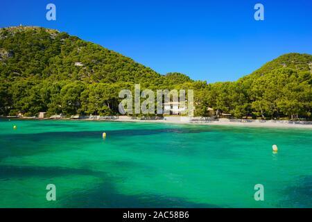 Superbe plage Playa Formentor près de Port de Pollensa, au nord de Majorque, Iles Baléares, Espagne. Une plage vide et spectaculaire de l'eau turquoise. Banque D'Images