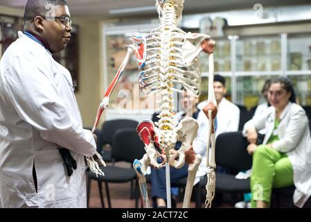 Les médecins de race mixte, de sexes différents, dans la salle d'étude, d'étudier l'anatomie humaine, sur le squelette. Les jeunes étudiants en médecine à l'université de médecine Banque D'Images