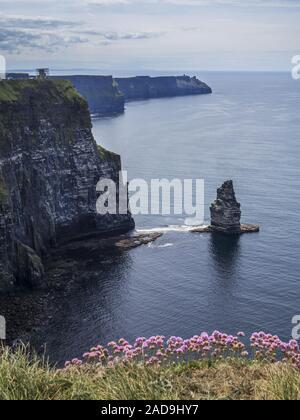 Clifs de Moher en Irlande Banque D'Images