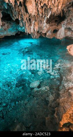 L'eau bleu cristal arc-en-ciel dans le cénote. Chikin Ha park. Le Mexique