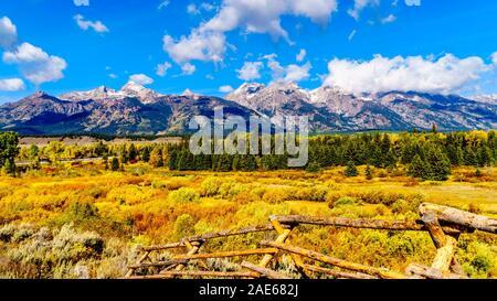 Couleurs d'automne entourant le nuage de l'Grand Tetons dans Grand Tetons National Park. Vu de près des Étangs noirs donnent sur Jackson Hole WY