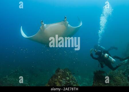 Plongeur femelle photographier un grand Oceanic Manta Ray sur un récif en Thaïlande Banque D'Images