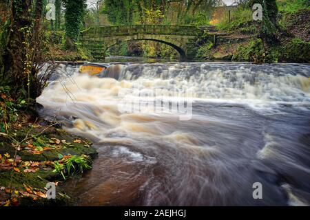 UK,South Yorkshire,Sheffield,supérieure Coppice Weir & Pont à cheval pendant l'automne Rivelin Banque D'Images