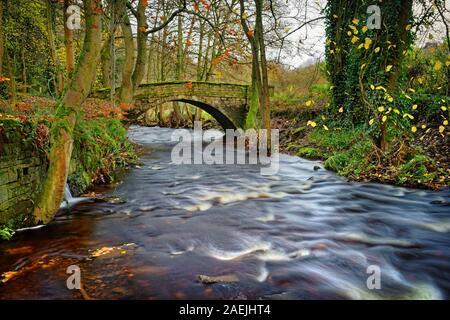 UK,South Yorkshire,Rivière,Sheffield & Rivelin Roscoe Bridge en automne Banque D'Images
