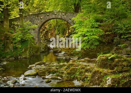 Foley's Pont sur la rivière Shimna à Tollymore Forest Park, l'Irlande du Nord. Banque D'Images