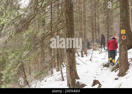 Route de pointage, la randonnée marques. Montagnes alpines aventure voyage direction concept. Sentier de randonnée en hiver sur les montagnes. Banque D'Images