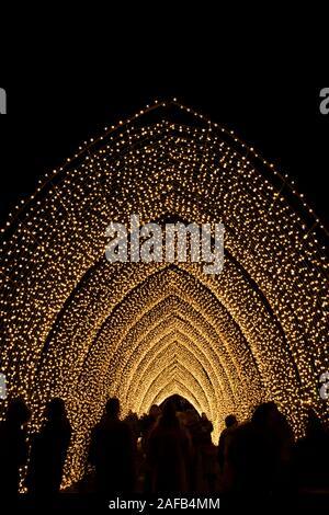 La cathédrale de la lumière à la lumière de Noël 2019 Affichage à Kew Gardens, London, UK Banque D'Images