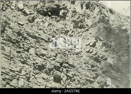 . Jefferson, Berkeley, et Morgan comtés, par G.P. Grimsley, assistant géologue. I.C. White, géologue de l'état. Ces schistes et grès sont généralement gris-verdâtre, orgreenish en couleur et la météo à un ellowish^j-vert, mais il ne sont pas rares zones de schistes brun-rouge et de grès. Dans certaines couches fossiles sont communs et l'espèce caractéristique, Spiri-fer disjunctus baleine de Chemung stade, se produit fréquemment et thistogether avec la présence d'autres espèces Chemung, lithologicalsimilarity et position stratigraphique indique la justesse de thecorrelation de cette division Banque D'Images