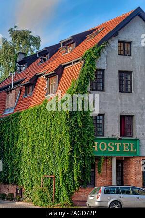 Envahi par le lierre mur latéral de l'hostel en vieux bâtiment rénové à Gdansk Pologne Europe Banque D'Images