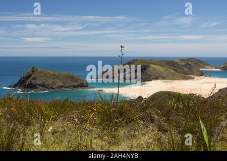 Cape Maria Van Diemen à Northland, New Zealand. Le petit cap est vu de la promenade côtière Te Paki, un sentier de randonnée de 4 jours autour de la Rein Banque D'Images