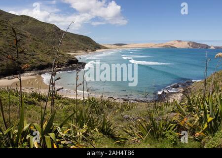 Voir de Te Werahi Beach et Cape Maria Van Diemen à partir du sentier de randonnée côtière Te Paki, sur la voie du cap Reinga, Northland, Nouvelle-Zélande. Banque D'Images