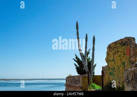 Cactus dans la plage à proximité de ruines du mur industiral, Faro, Portugal