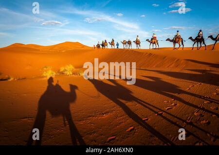 Désert du Sahara chameaux trekking aventure dromadaires avec les berbères et berbères équitation excursion directeurs à Merzouga Dubai, Oman, Bahreïn Maroc o Banque D'Images