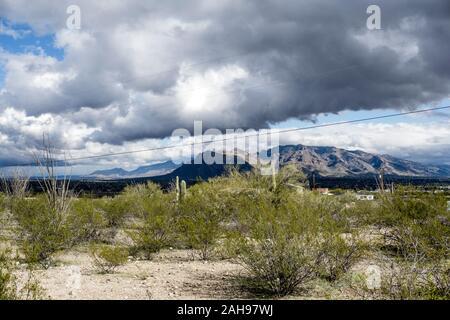 Magnifique vue tempête a éclipsé les montagnes lointaines de Santa Catalina tandis que les nuages passent rapidement dans le ciel vu du désert ensoleillé haut à la périphérie ouest de Tucson Banque D'Images