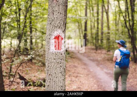 Randonnées sentier balisé dans la forêt. La route touristique de marquage peint sur l'arbre. Route touristique signe. Itinéraire de voyage signe. Randonneur Tourisme avec sac à dos Banque D'Images