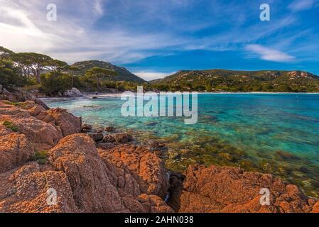 Vue panoramique sur la plage de Palombaggia à partir de rochers de Punta di Colombara dans la lumière du soleil du soir, Corse du Sud, Corse du Sud, France Banque D'Images