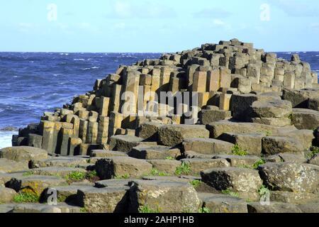 Spectaculaire littoral de stepping stones et de colonnes de basalte de la Chaussée des Géants, le comté d'Antrim, Irlande du Nord, au Royaume-Uni, en Europe.