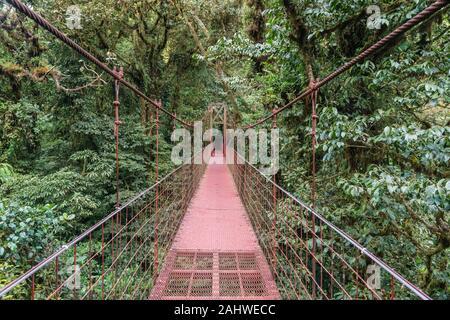 Pont suspendu dans la canopée, réserve forestière de Monteverde Cloud, Costa Rica Banque D'Images