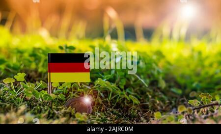 Drapeau allemand avec deux brillants pièce en euros dans des mousses et végétaux environnement Banque D'Images